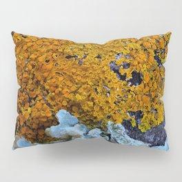 Tree Bark Pattern # 6 with Orange and Blue Lichen Pillow Sham