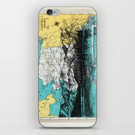Alaska iPhone Skin