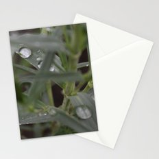 Hidden Stationery Cards