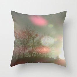 Color Balls Throw Pillow