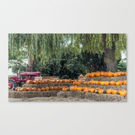 Pumpkin Harvest. Canvas Print