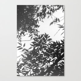 Reflejo Canvas Print