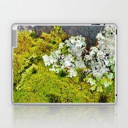 Tree Bark with Lichen#8 Laptop & iPad Skin