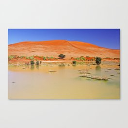 Water in the Namib desert after rain season, Namibia Canvas Print
