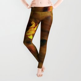 Hovering Hummingbird Leggings