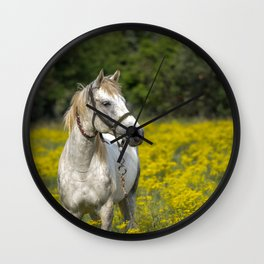 Gray Horse in a Field of Yellow Mustard Wall Clock