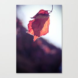 Soft Autumn #5 Canvas Print
