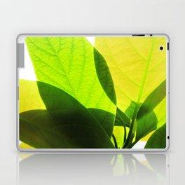 Avocado Leaves Laptop & iPad Skin