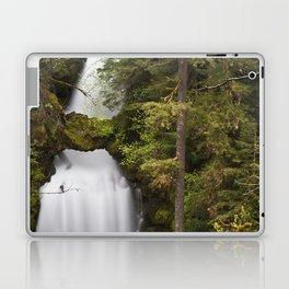 Curly Falls, Washington Laptop & iPad Skin