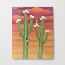 gila woodpeckers on saguaro cactus Metal Print