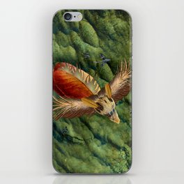 Flying Low iPhone Skin