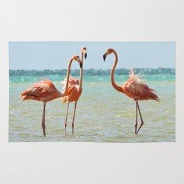 Flamingos Isla Holbox, Mexico Rug