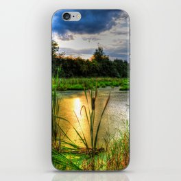Sunset Over the Marsh iPhone Skin