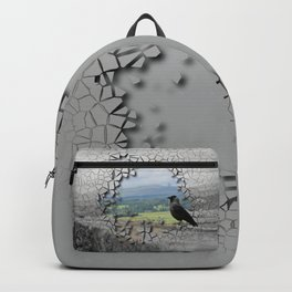 Cracked Up View Backpack