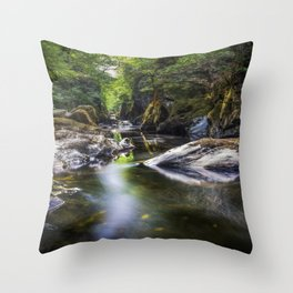 Summer At Fairy Glen Throw Pillow