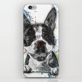 Boston Terrier Paint Splatter iPhone Skin