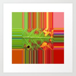 PhotoSynthesis/TheCross1070594 Art Print