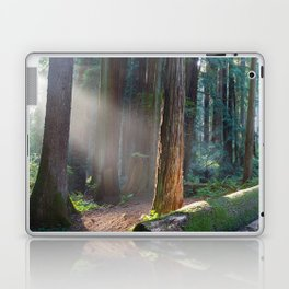 Keepers Of The Light Laptop & iPad Skin