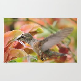 Little Ms. Hummingbird in for More Licks Rug