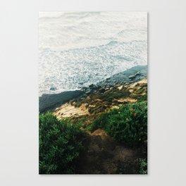 solana Canvas Print