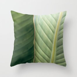 Fine Lines Throw Pillow
