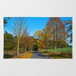 Autumnal feeling of October Rug