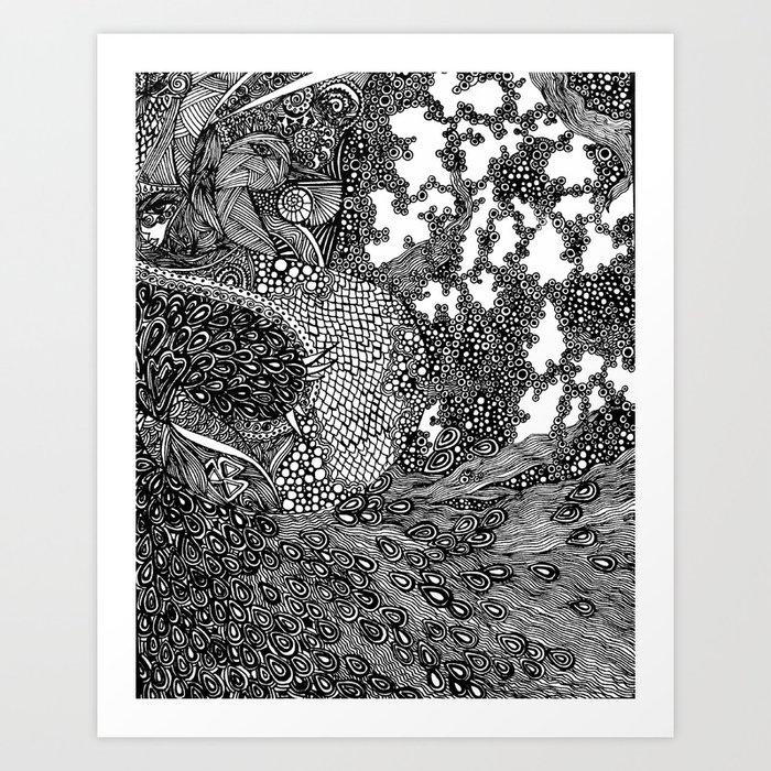 PNI005   La pavo real de Strut   Limited Edition of 50 Prints Art Print