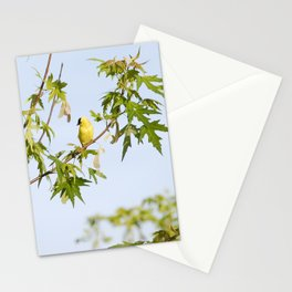 Spring Goldfinch Stationery Cards