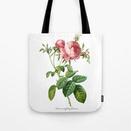 Vintage Rose - Redoute's Rosa Centifolia Foliacea Tote Bag