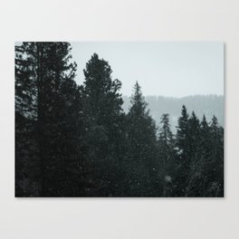 Venture Deep Canvas Print