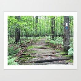 Green Trail Art Print