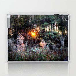 Sunset Forest : Where The Fairies Dwell Laptop & iPad Skin