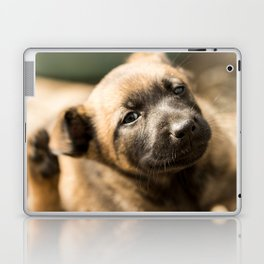 Who will play with me next? Laptop & iPad Skin