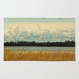 Birds by the Dessower Sea in Mecklenburg Vorpommern East Germany Rug