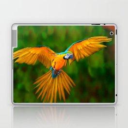 Flying Golden Blue Macaw Parrot Green  Art Laptop & iPad Skin