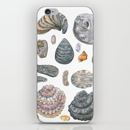 Normandy's shells iPhone Skin