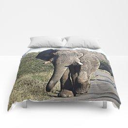 CArt Elephant 118 Comforters