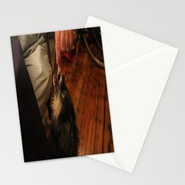 begging chihuahua Stationery Cards