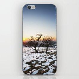 Winter Sunset iPhone Skin