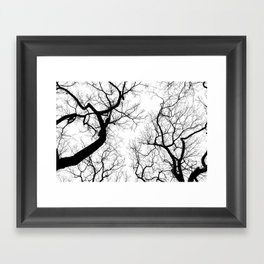 Black and white tree top silhouettes... Framed Art Print