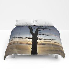 Shadow tree at dawn - Khövsgöl Mongolia Comforters
