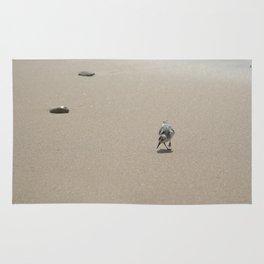 Sandpiper bird on wet sand Rug
