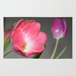 Spring Tulips Rug