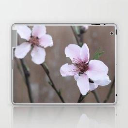Peach Blossoms Laptop & iPad Skin