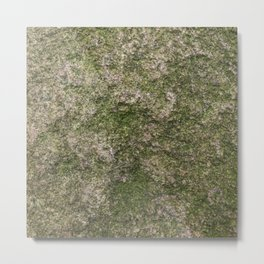 Stone and moss Metal Print
