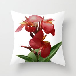 Red Canna Lily Throw Pillow