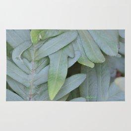 TEXTURES -- Ferns Enfolded Rug