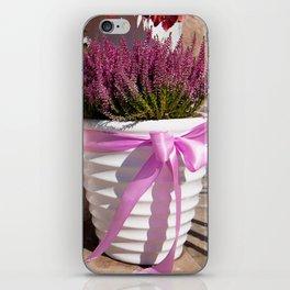 Blooming Calluna vulgaris or heather iPhone Skin