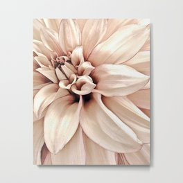 Golden Pink Dahlia, Forever Thine Metal Print