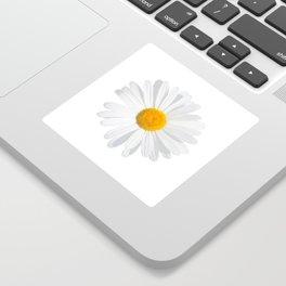chamomile daisy Sticker